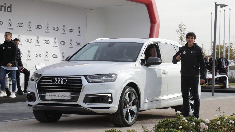 Vallejo: Audi Q7 e-Tron