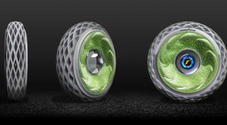 ¿Para qué sirve el musgo en un neumático de coche?