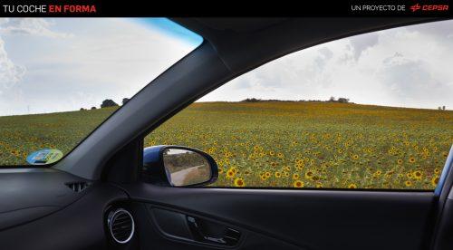 Cómo consigue un buen carburante que tu coche contamine menos