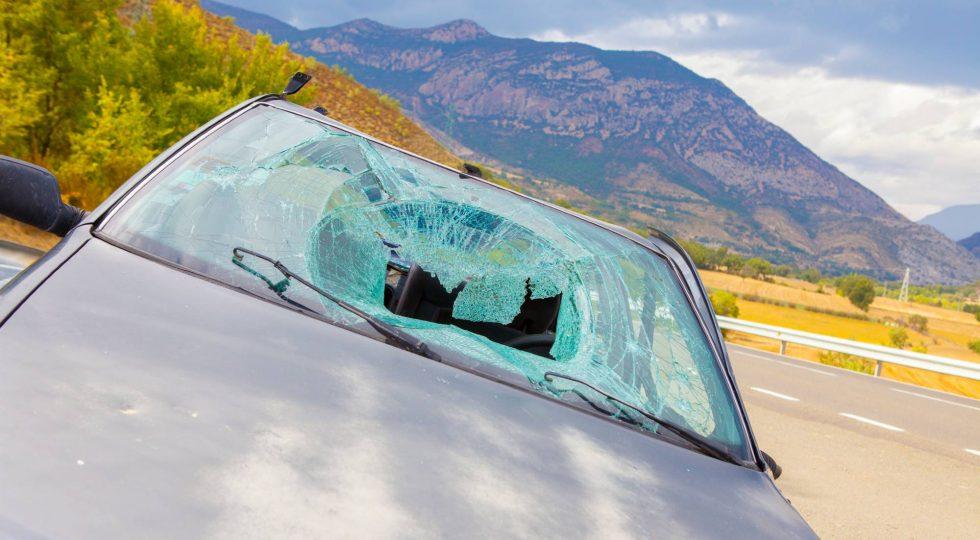 mortalidad en carretera